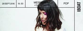 Affiche Mesparrow - Cléa Vincent
