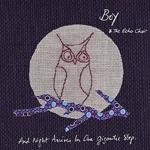 BOY AND THE ECHO CHOIR - And Night Arrives In One Gigantic Step