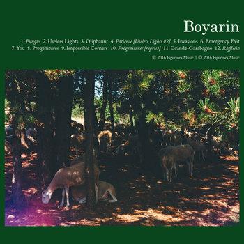 Boyarin - Boyarin