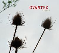 Cvantez - Tigers