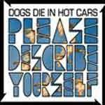 DOG DIES IN HOT CARS - Please Describe Yourself