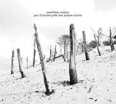Mathieu Malon - Peu d'ombre près des arbres morts