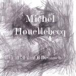 MICHEL HOUELLEBECQ - Le Film Du Dimanche