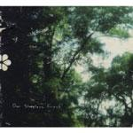 OUR SLEEPLESS FOREST - S/t