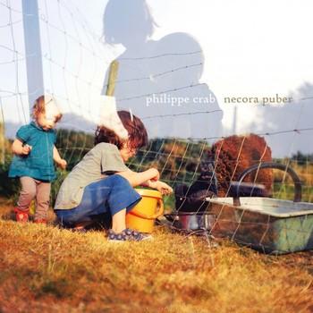 Philippe Crab - Necora Puber
