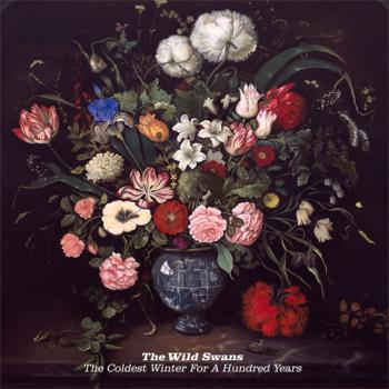 The Wild Swans - The Coldest Winter for a Hundred Years