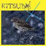 V/A - Kitsuné X